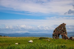 Sheep near Ruin on Isle of Iona Image by Sherry Wilbur from Pixabay
